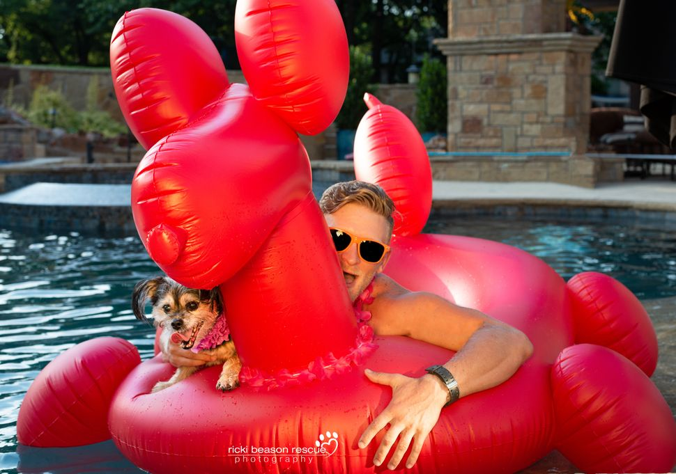 Dad bod: Brittan&nbsp; &nbsp;<br>Dog: Kingston from Rescue Row