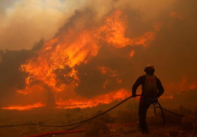 Fire, Fire Everywhere: The 2018 Global Wildfire Season Is Already