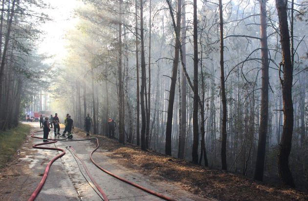 Firefighters tackle a forest fire near Potsdam, Germany, on July 26,