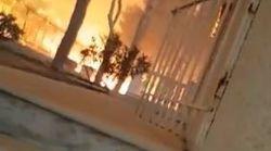 Νέο ντοκουμέντο από τη φωτιά στο Μάτι: Η φωτιά πέρασε από πάνω του, όμως αυτός