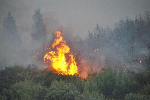 Ζάκυνθος: Υπό μερικό έλεγχο οι φωτιές στο Καλαμάκι και τη