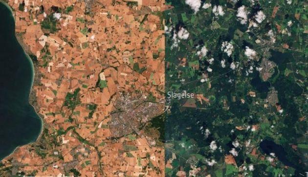 덴마크 슬라겔세 지역의 올해 7월(왼쪽)과 지난해 7월 모습.