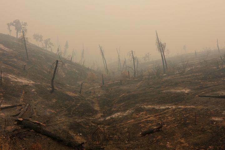 Wildfires also left the hills burned near Igo California.
