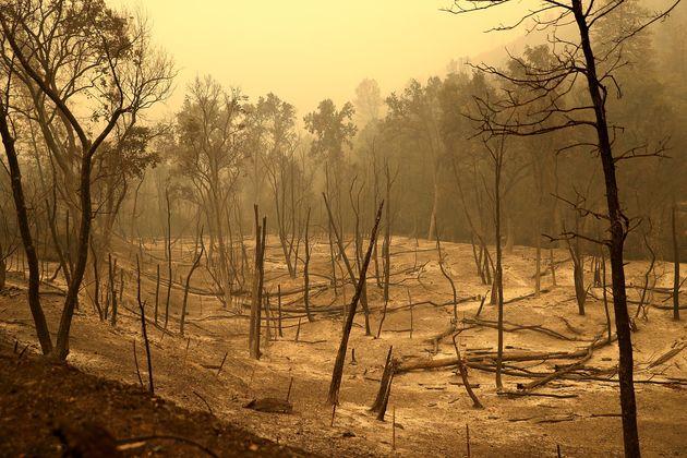 미국 캘리포니아도 산불 확산으로 최소 6명