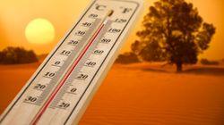 Aménagement des horaires de travail dans les wilayas du Sud durant le mois
