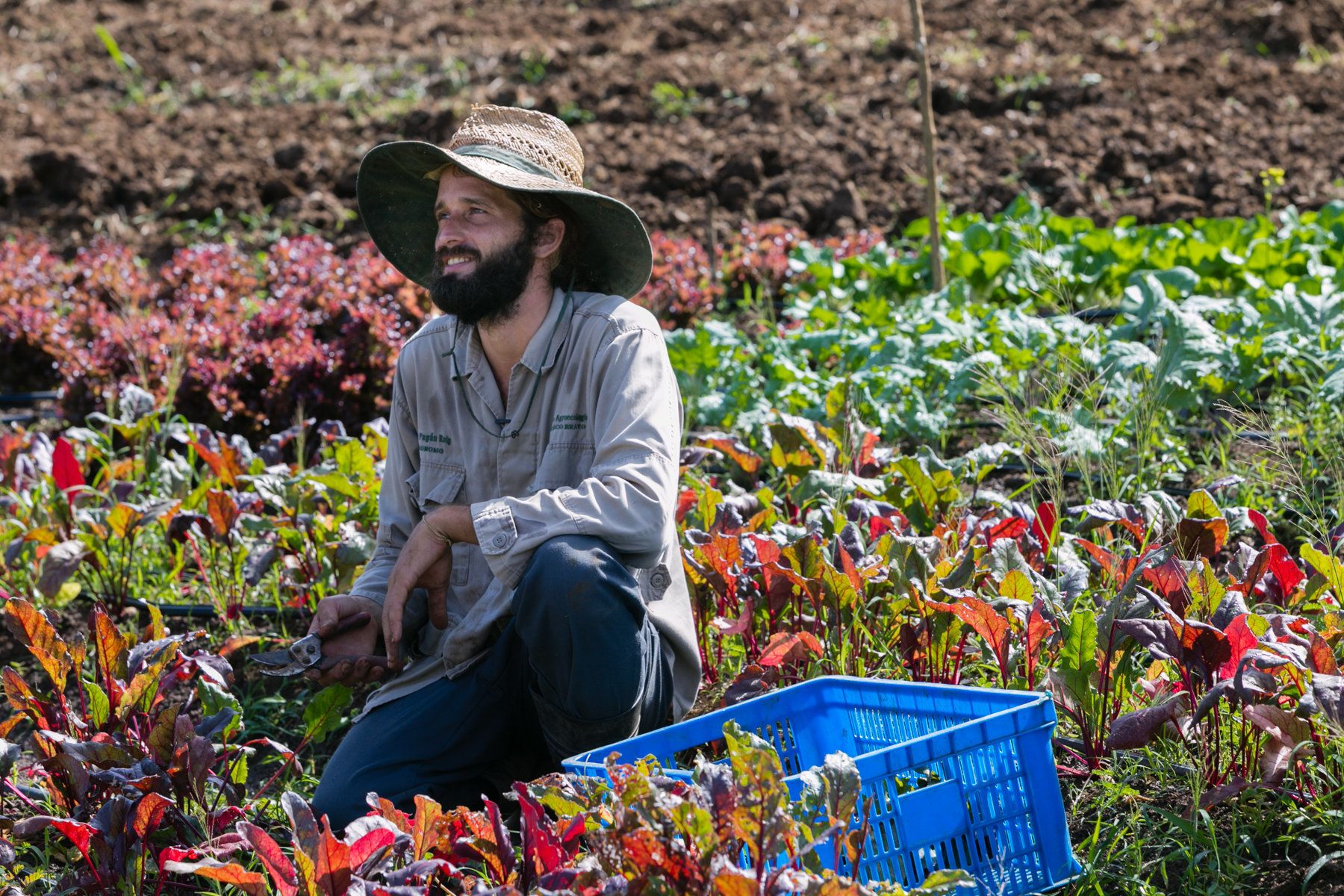 Ian Pagán Roig credits his farm's preservation to a philosophy of sustainability, self-reliance, and resilience.