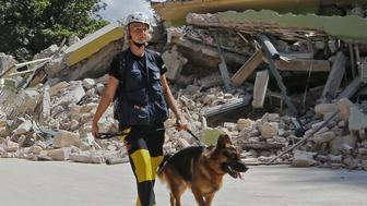 Rescuers walk with dogs following an earthquake in Amatrice, central Italy August 24, 2016. Picture taken August 24, 2016. REUTERS/Ciro De Luca