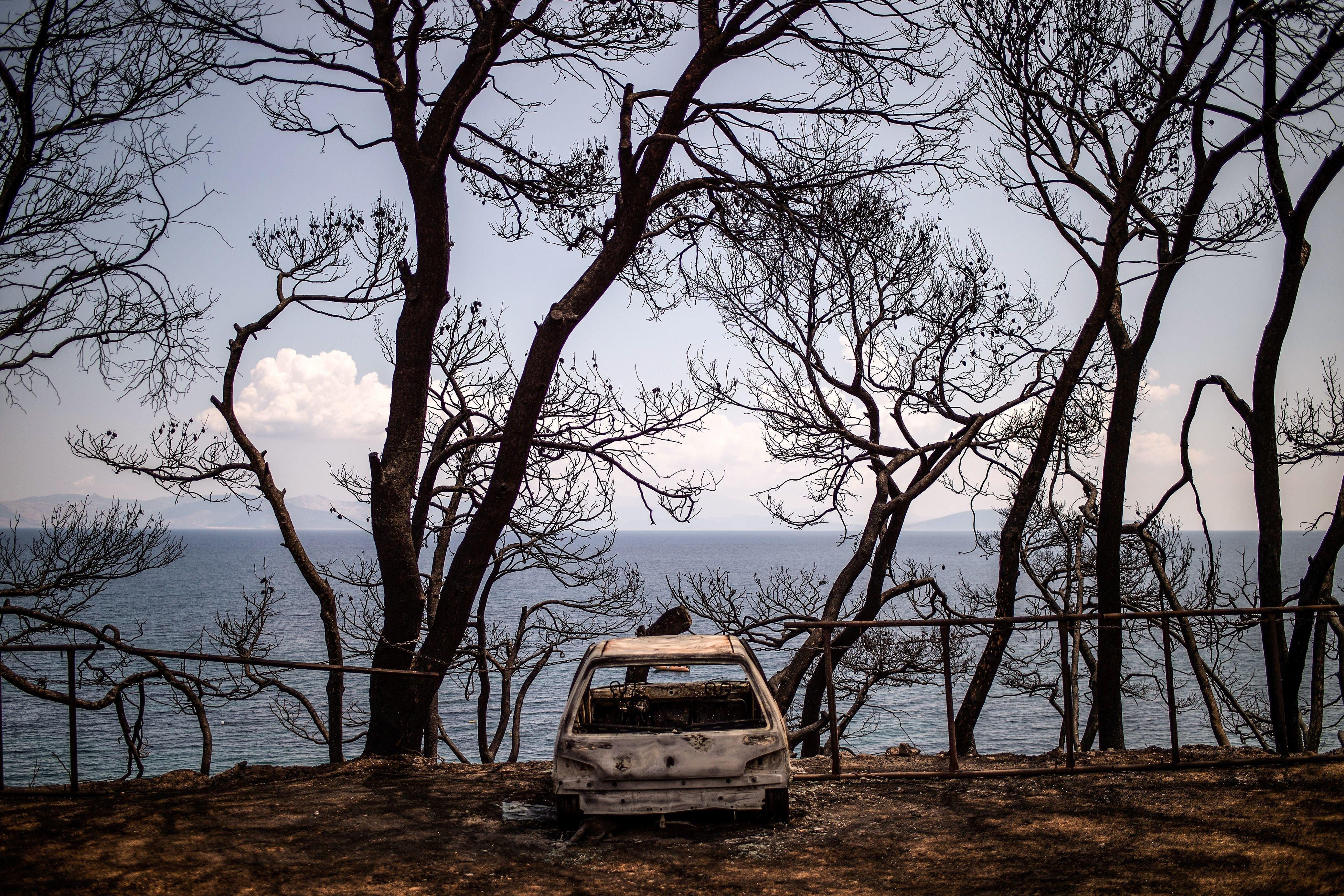 Τα 15 προκαταρκτικά συμπεράσματα για τις φωτιές στην Αττική από το Πανεπιστήμιο Αθηνών