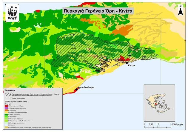 Καμπανάκι από 11 περιβαλλοντικές οργανώσεις: Πιο ευάλωτα τα δάση όσο εντείνεται η κλιματική αλλαγή. Πάρτε