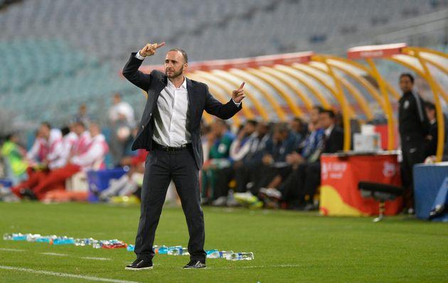 Djamel Belmadi sur le banc de la sélection du Qatar, janvier
