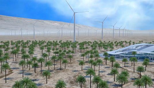 """Blockchain: """"Le projet de ferme éolienne à Dakhla est un pari"""