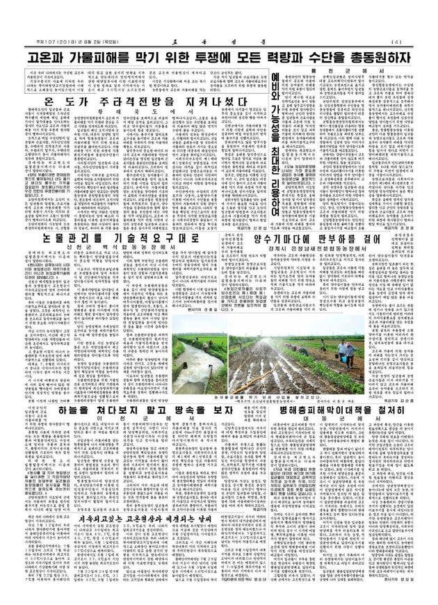 폭염, 가뭄 피해 방지에 모든 역량과 수단을 총동원하자고 호소한 2일치 노동신문