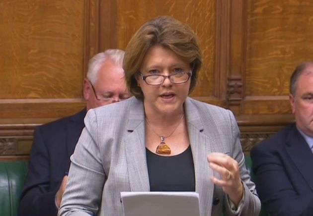 Tory MP Maria Miler said 'the healthcare needs of LGBT people are not currently being met effectively'