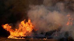 Πολύ υψηλός κίνδυνος πυρκαγιάς για την