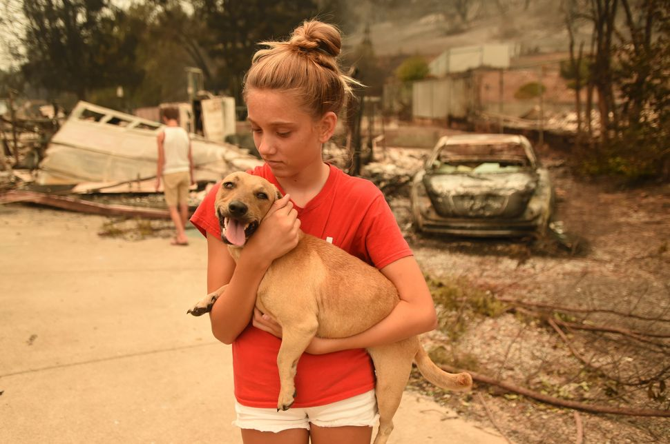 Kambryn Brilz, 12, holds her dog Zoe in front of what remains of her burnt home after she was returned safely by a neighbor d