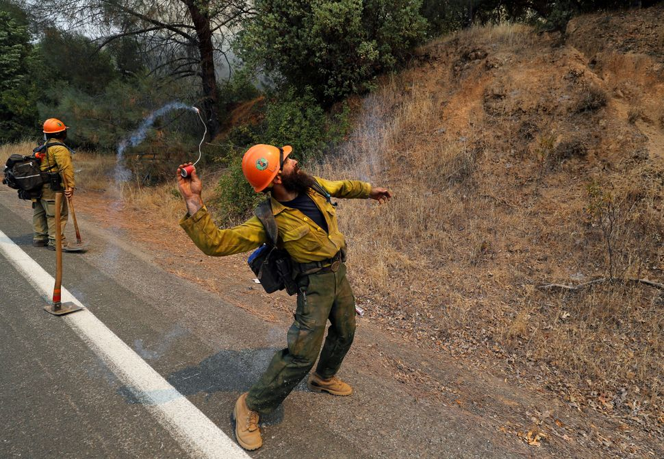 A firefighter throws an incendiary device into the brush to ignite backfires while battling the Ranch Fire north of Upper Lak