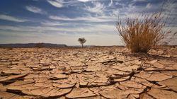 Klimawandel: Forscher warnen vor gefährlichem Domino-Effekt
