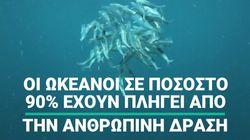 Σχεδόν το 90% των ωκεανών έχει πληγεί από την ανθρώπινη