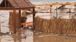 Routes bloquées, zones sinistrées: La pluie cause des dégâts en Tunisie