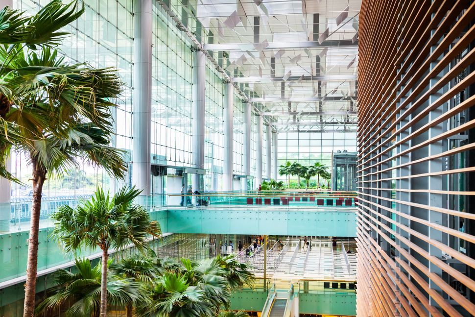 """When she arrives at <a href=""""http://www.changiairport.com/"""" target=""""_blank"""">Singapore's Changi Airport</a>, Rachel says she f"""