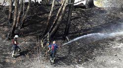 Großbrand in Siegburg fordert 32 Verletzte: Das sind die dramatischen Bilder der Rettung