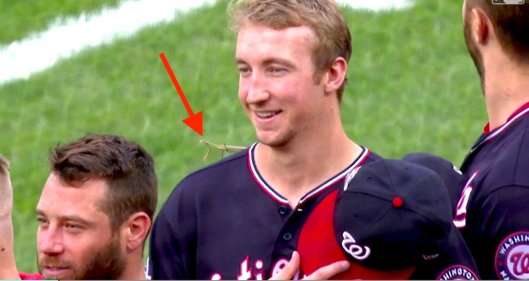 Giant Bug Lands On MLB Pitcher During Anthem. His Response Is
