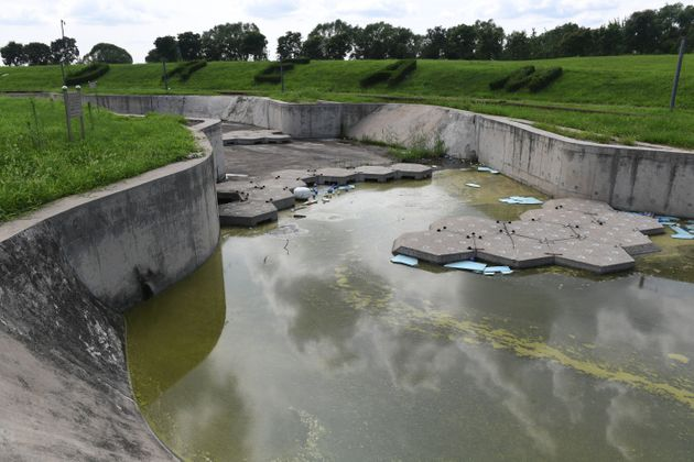급류 카약(whitewater kayaking) 경기장. 배수되지 못한 물에 녹조가