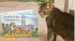 Η γάτα που έγινε άγαλμα στον Καθεδρικό ναό του