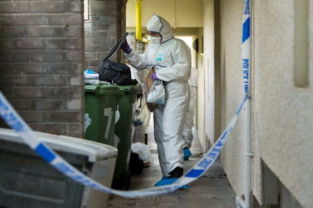 Forensics at the property where David Gaut's body was
