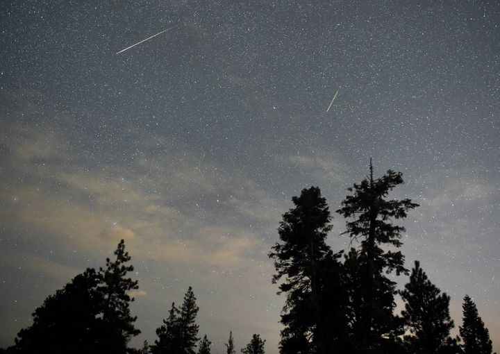 A pair of Perseid meteors streak across the sky above desert pine trees on Aug. 13, 2015, in the Spring Mountains National Re