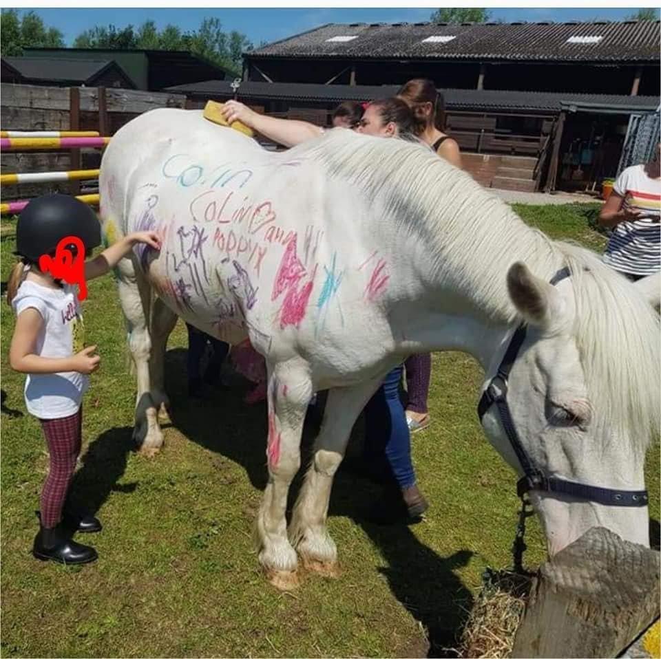 «Pony Painting» σε παιδικά πάρτι: Η νέα τάση που προκαλεί