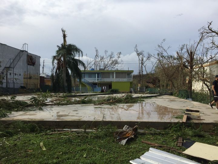The backyard where the National Circus School's tent now stands was devastated after Hurricane Maria.