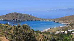 고양이를 사랑한다면 당신도 전망 좋은 이 아름다운 그리스 섬에서 무상으로 살 수