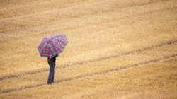 Don't Forget Your Brolly… Thunderstorms And Heavy Rain Are On Their
