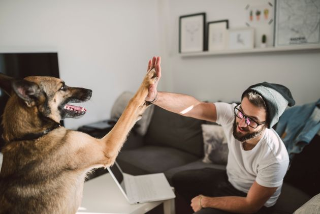 How Future Tech Will Help Us Connect With Our Pets More Than Ever
