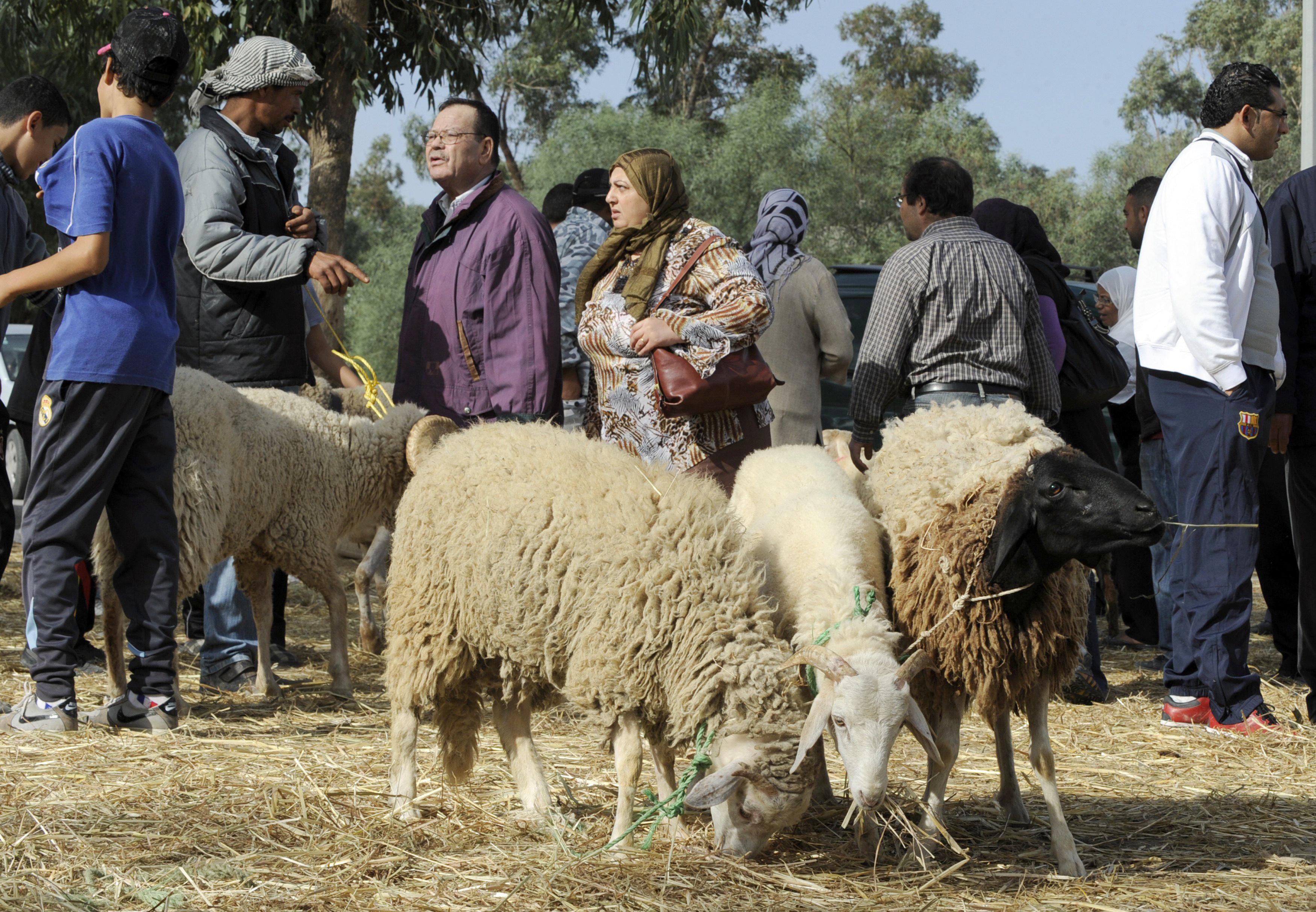 La Tunisie fêtera l'Aïd El Idha mardi 21