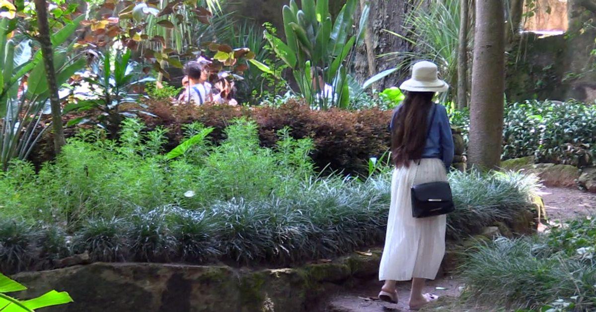 Les Jardins Exotiques Ce Tresor De La Nature Cache A Bouknadel Al