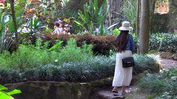 Les Jardins Exotiques, ce trésor de la nature caché à Bouknadel