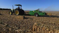 La valeur des investissements agricoles durant les 7 premiers mois de 2018 ont augmenté de 40,1% selon