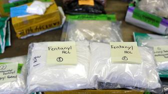 Plastic bags of Fentanyl are displayed on a table at the U.S. Customs and Border Protection area at the International Mail Facility at O'Hare International Airport in Chicago, Illinois, U.S. November 29, 2017. Picture taken November 29, 2017. REUTERS/Joshua Lott