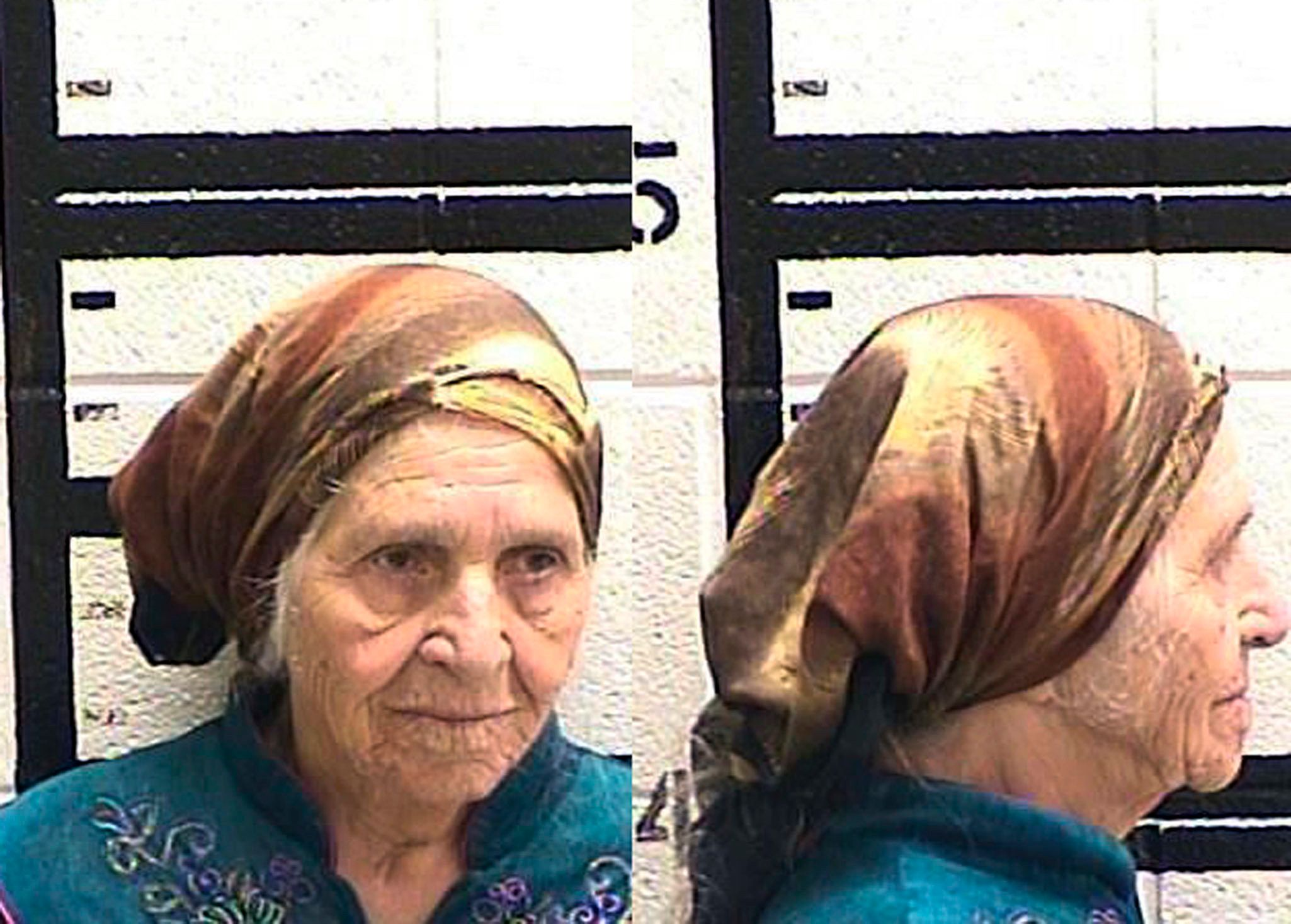 Martha Al-Bishara, 87, was charged with criminal trespass and obstructing an officer Friday after she was seen holding a