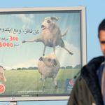 Comment les vegans marocains préparent l'Aïd