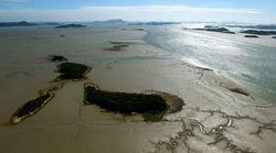 '한국 갯벌' 이번엔 세계유산