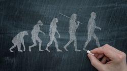 Von den Neandertalern bis