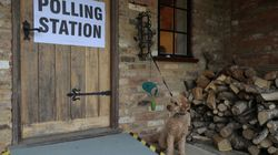 Why I Did Not Vote In Last Year's Snap