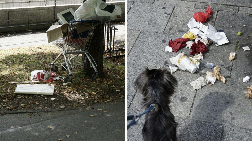 Gerade als Hundebesitzerin sieht man viel Müll auf den
