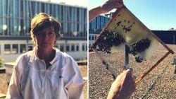 Stadtimkerin erklärt den Kampf gegen das Bienensterben – und die Schattenseiten