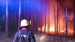 Waldbrand in Brandenburg: Erste Aufnahmen zeigen Feuerwehr im