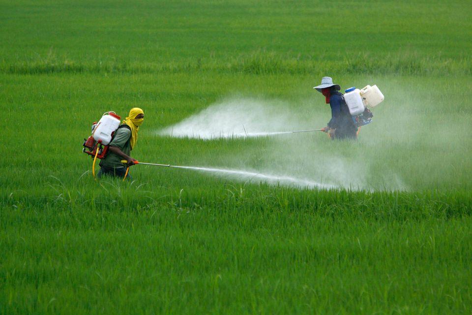Επικίνδυνες για τον άνθρωπο και την άγρια ζωή πρακτικές διαχείρισης των συσκευασιών γεωργικών
