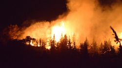 Le nombre d'incendies de forêt a baissé de 60% par rapport à l'année